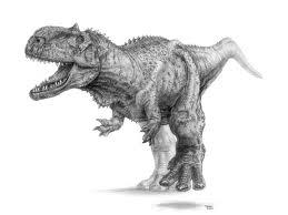 Dinosaur fossil found in Xinjiang