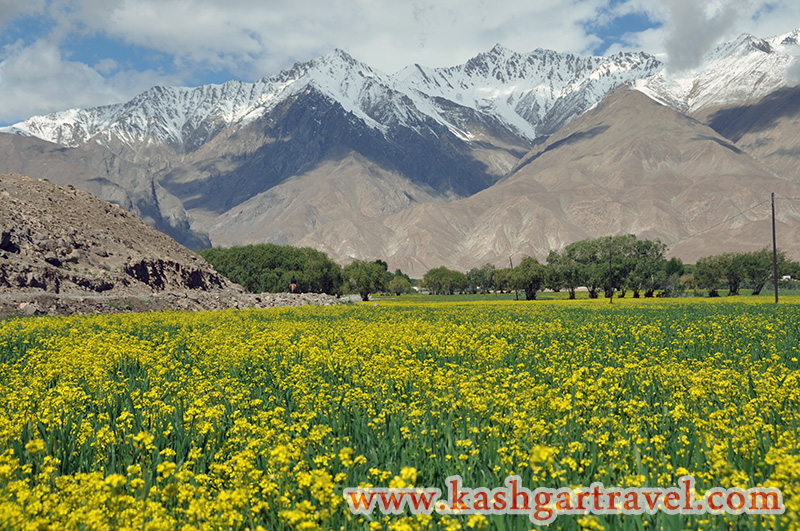 Beautiful Landscape at Tashkurgan
